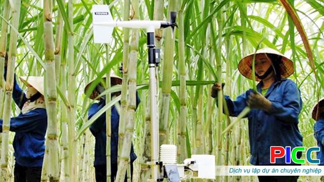 """AI và IoT: Xu hướng sẽ """"áp đảo"""" trong phát triển nông nghiệp ở Việt Nam"""