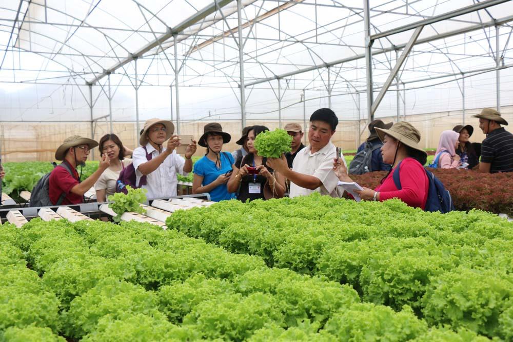 Các bước lập dự án nông nghiệp và trang trại