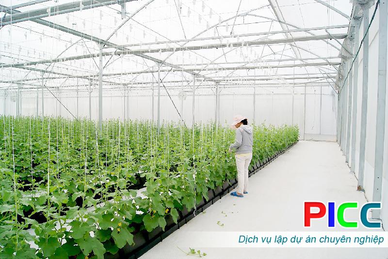 Các chuyên gia hiến kế về phát triển nông nghiệp công nghệ cao.