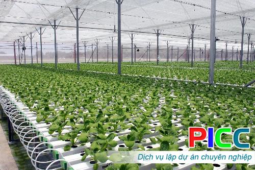 Đầu tư xây dựng trang trại trồng trọt và chăn nuôi kết hợp theo hướng hữu cơ áp dụng công nghệ cao.
