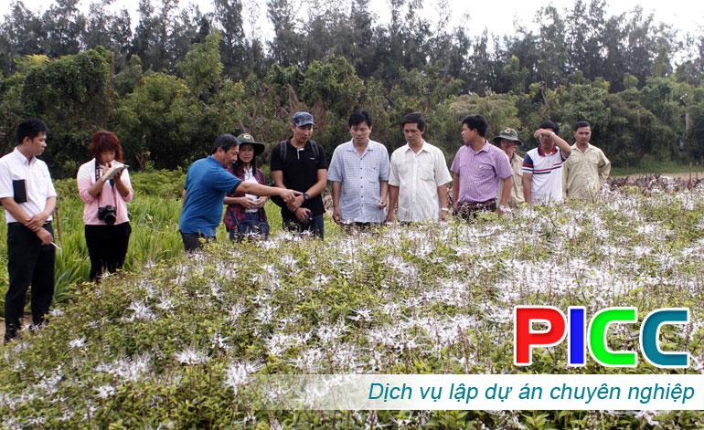 Dự án bảo tồn cây dược liệu kết hợp tham quan du lịch