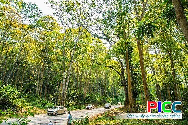 Dự án Đầu tư Bảo tồn rừng săng lẻ kết hợp du lịch