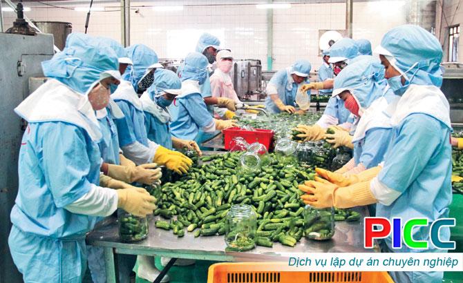 Dự án đầu tư xây dựng nhà máy chế biến nông sản