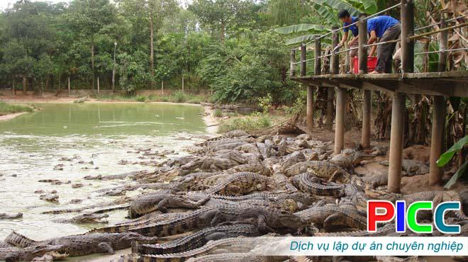 Dự án đầu tư xây dựng các trại nuôi cá sấu