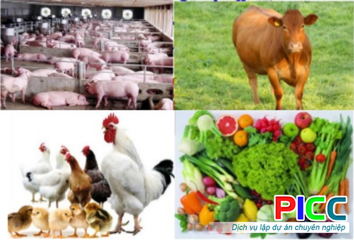 Dự án Khu liên hợp giết mổ gia súc gia cầm, sơ chế sản phẩm nông nghiệp và chế biến thực phẩm sạch tỉnh Hòa Bình