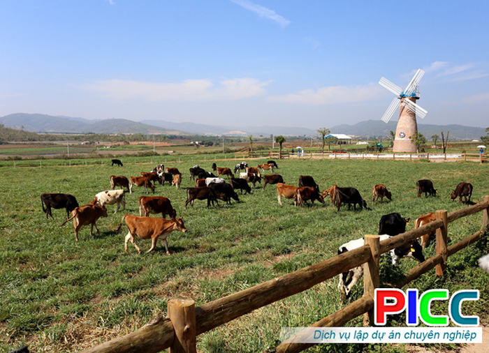 Dự án kinh tế trang trại tổng hợp tỉnh Phú Yên