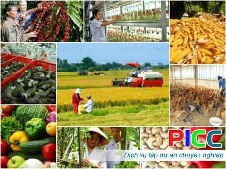Dự án nông nghiệp hỗn hợp Kiên Giang