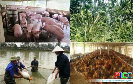 Dự án Trang trại tổng hợp VAC tỉnh Bình Dương