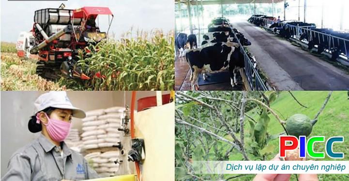 Dự án Trung tâm Nông nghiệp chất lượng cao