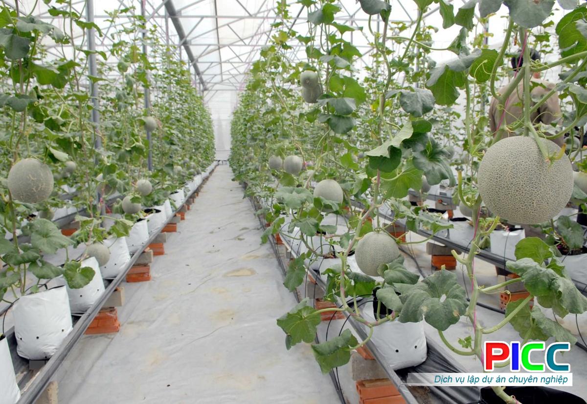 Khu nông nghiệp ứng dụng Công Nghệ Cao tại Đồng Nai