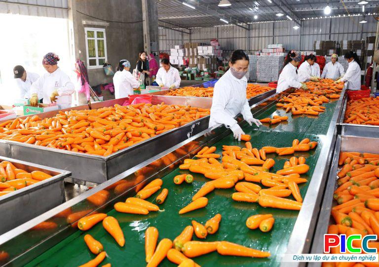 Nhà máy sản xuất chế biến nông sản chất lượng cao Đăk Nông