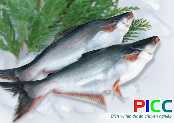 Nuôi thủy sản, sản xuất cây giống chất lượng cao tại Hậu Giang