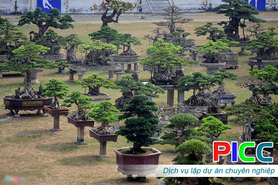 Phát triển ngành nghề sinh vật cảnh tại xã Long Thọ