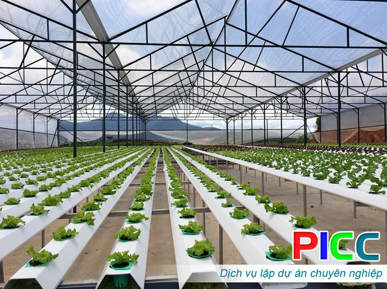 Quy hoạch các vùng nông nghiệp công nghệ cao tỉnh Ninh Thuận