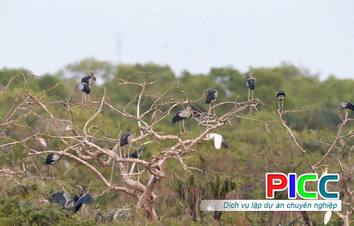 Thuyết minh dự án đầu tư Khu du lịch sinh thái Vườn Chim Bạc Liêu
