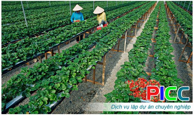 Thuyết minh dự án Xây dựng khu sản xuất nông nghiệp công nghệ cao trong nhà màng và sản xuất rau hữu cơ