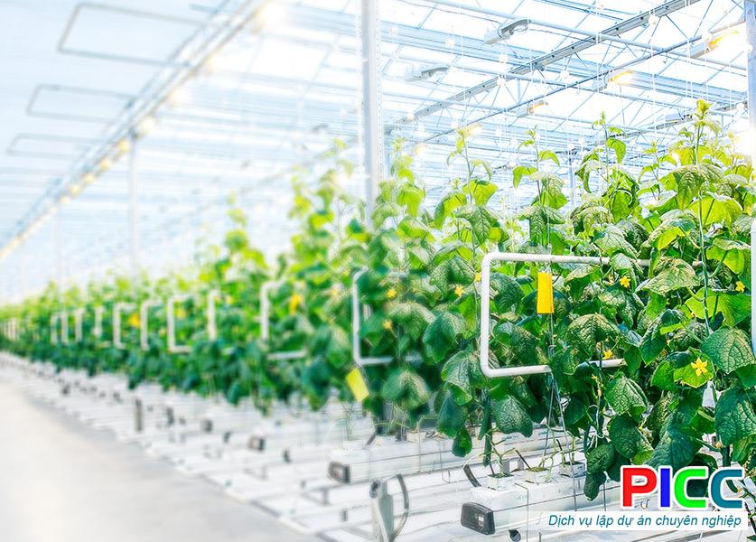Xây dựng Khu nông nghiệp ứng dụng Công nghệ cao Xuân Thiện Cư M