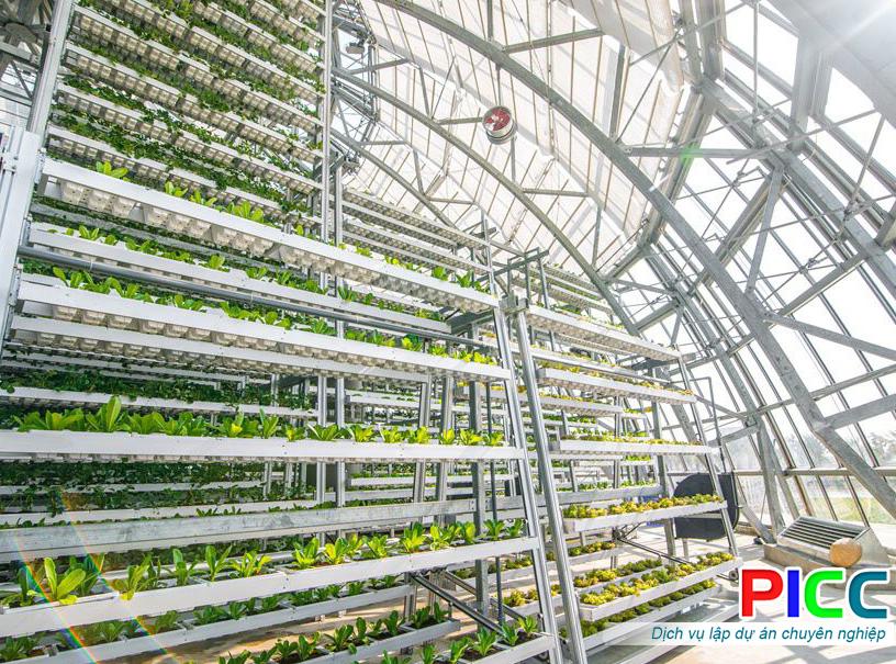 Xây dựng khu sản xuất nông nghiệp công nghệ cao trong nhà màng và sản xuất rau hữu cơ