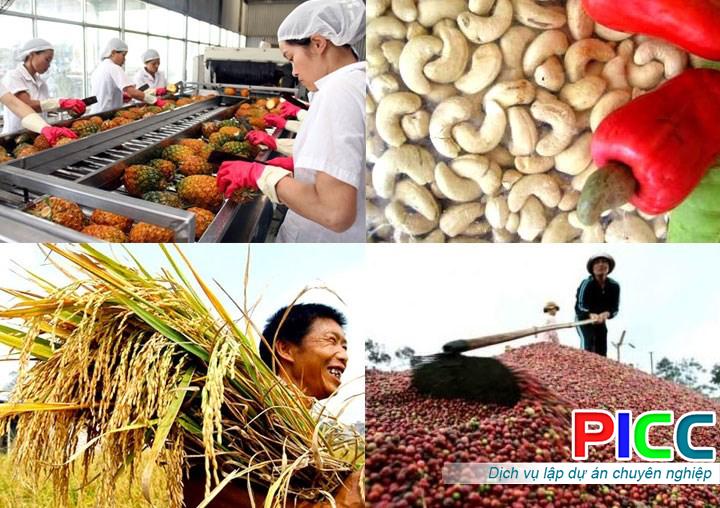 Xây dựng nhà máy chế biến nông sản Xuân Thiện tỉnh Đăk Lăk